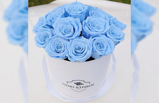 Light Blue Roses Meaning