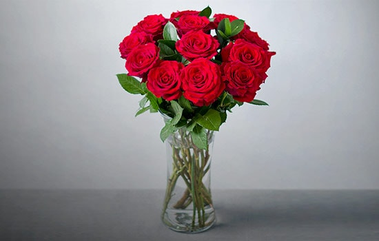 12 Red Roses Meaning