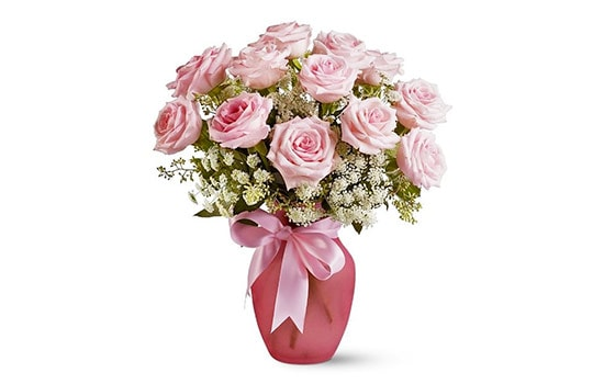Interesting facts about dozen rose meaning you rarely know for 12 dozen roses at your door
