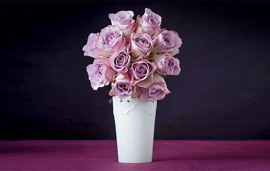 Meaning of Lavender Rose