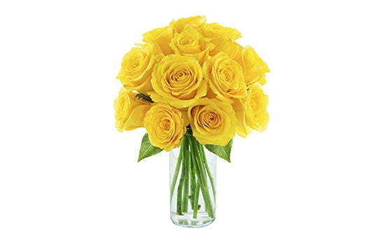 Yellow Rose Symbolism