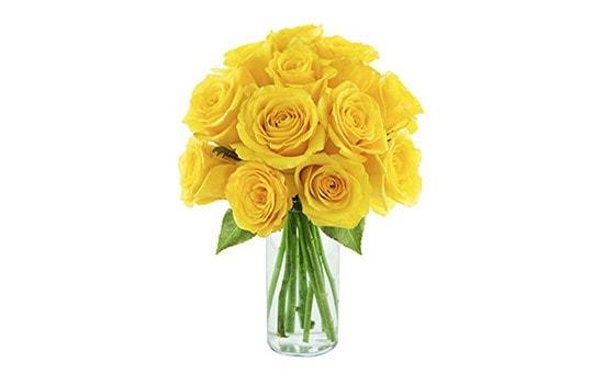 Yellow Rose Symbolism