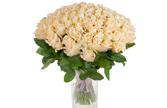 Cream Colored Rose Meaning