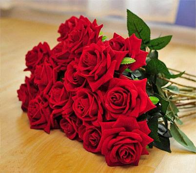 Meaning of Red Velvet Roses