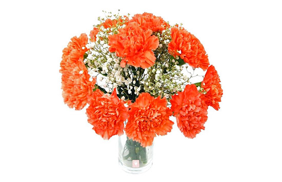 Orange flower meanings