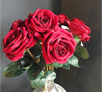 Red Velvet Roses