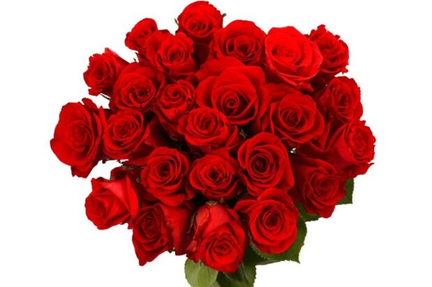 Loving Symbols of Valentine Day with flower